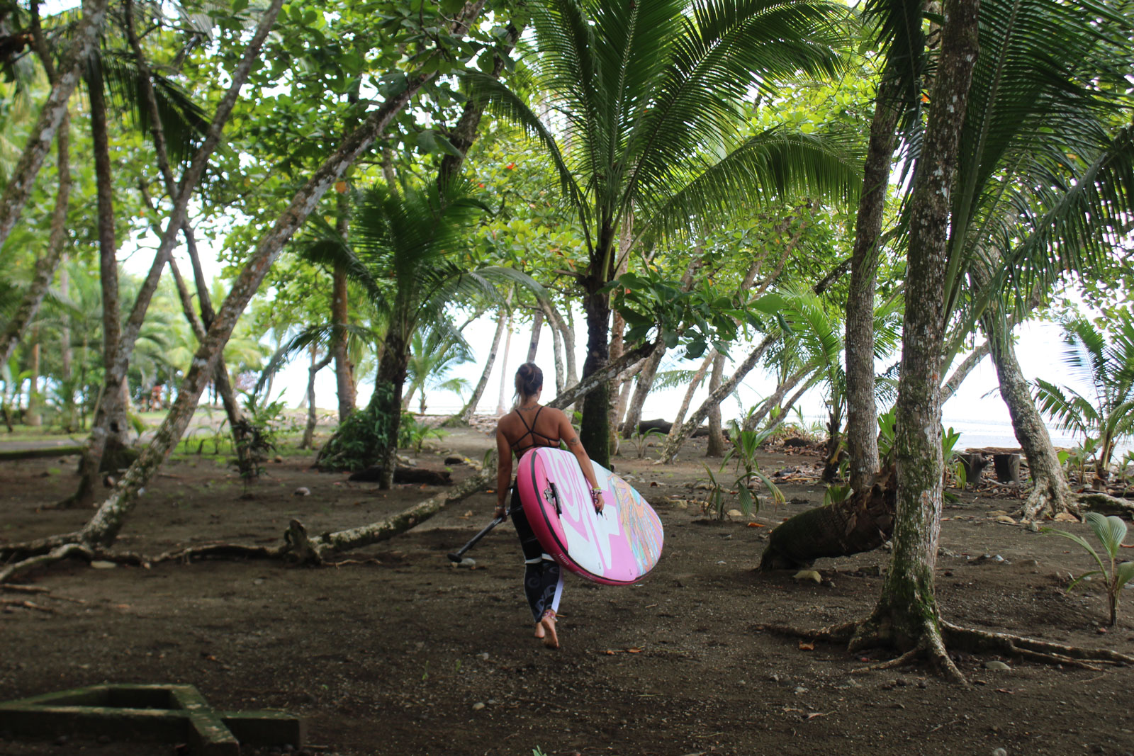 Your-SUP-Travel-Guide-to-Costa-Rica-with-Ciretta-Wanderlust-trees