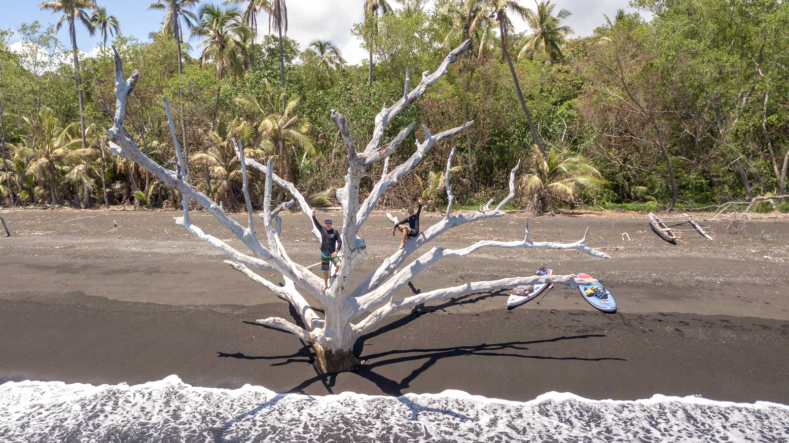 Islands-of-Vanuatu-by-Paddleboard-friends-tree-drone-shot-1600